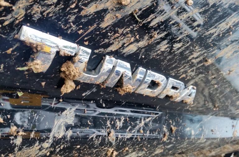 Гусеничная Toyota Tundra